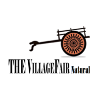 thevillagefair
